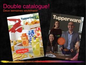 Double catalogue2015